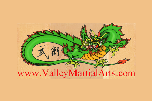 Valley Martial Arts Supply Logo