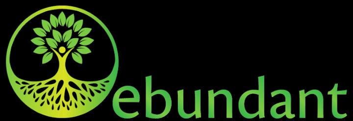 Ebundant Online Logo