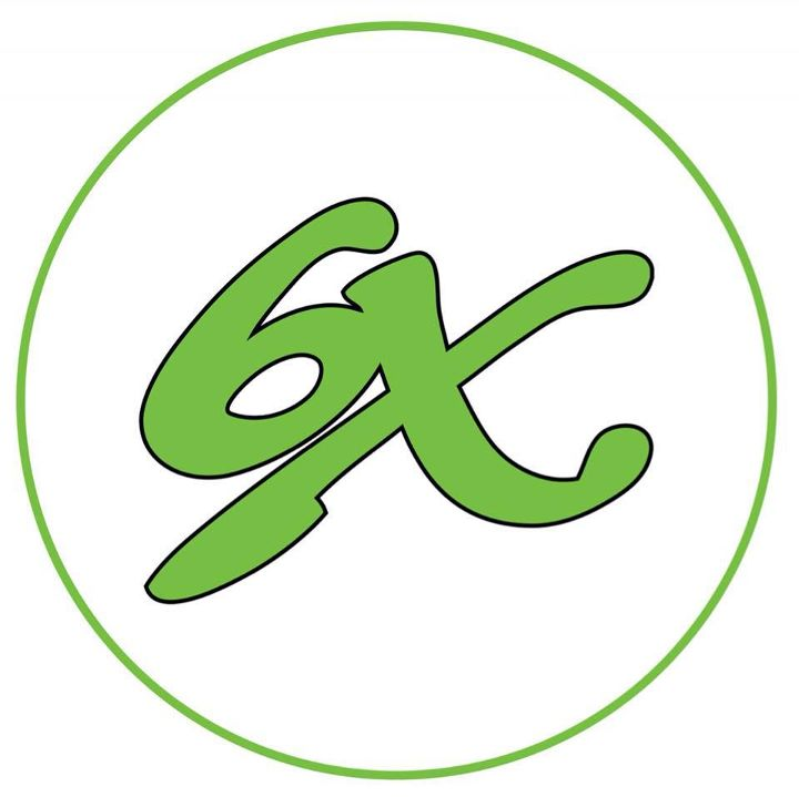 6X Logo